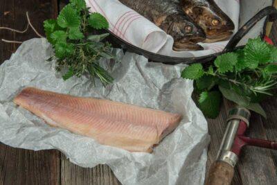 Bio Bachforelle Filet geräuchert ohne Haut